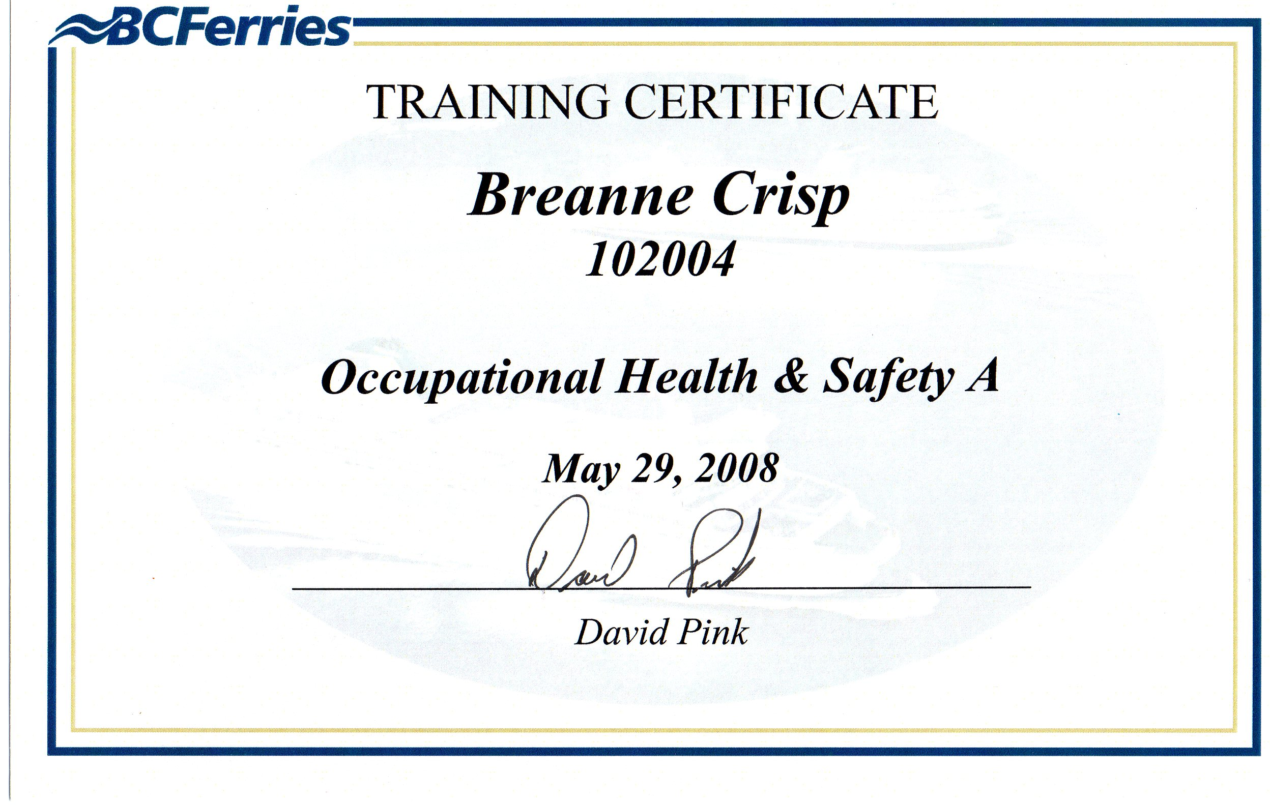 Safety and occupational health technician resume